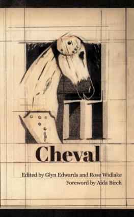 Call for entries: The Terry Hetherington Prize 2019 / Cheval 12